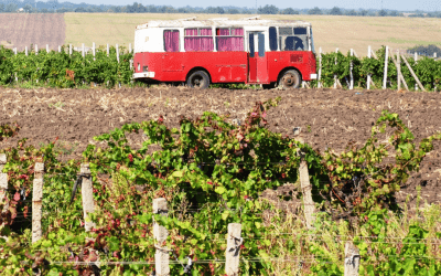 We don't offer wine bus tours. Here's Why.